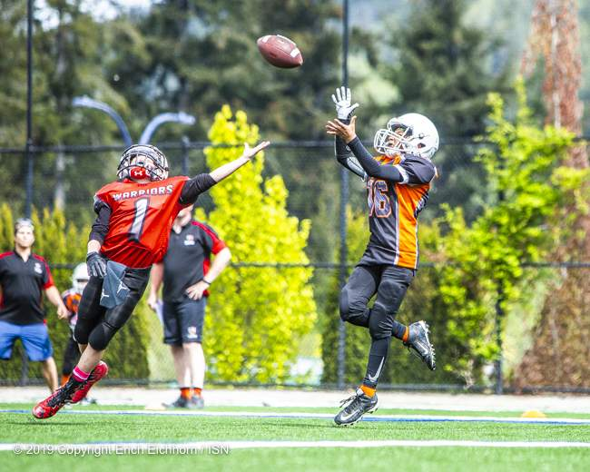 May 4th, 2019 Victoria, BC (SN) - A Nanaimo Lion looks for the reception down field past the outstretched arm of the Westshore defender in PeeWee football play - Erich Eichhorn image ( www.allsportmedia.ca)