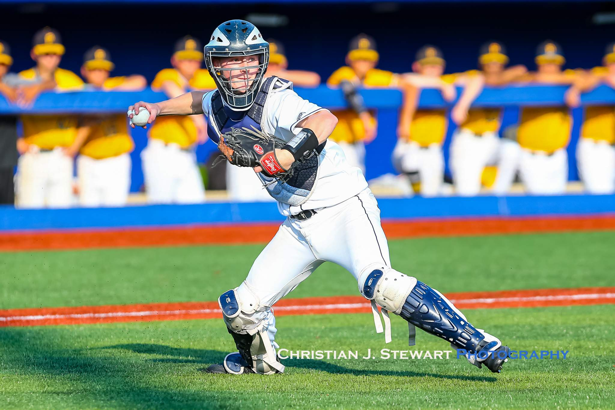 UBC catcher Cason Black is ready to throw after fielding a bunt against Nanaimo Friday (Photo: Christian J. Stewart)