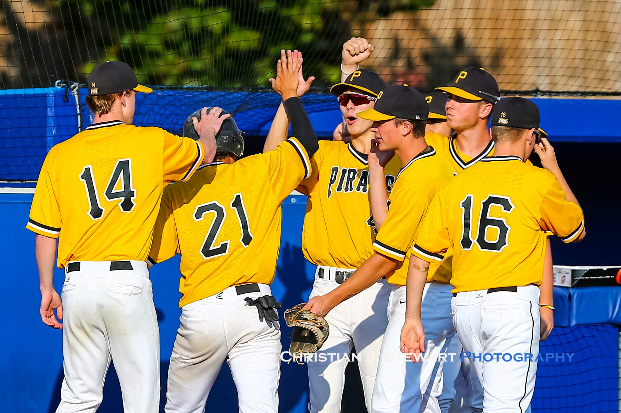 The Mid-Island Pirates celebrate one of their runs in the win over Coquitlam (Photo: Christian J. Stewart)